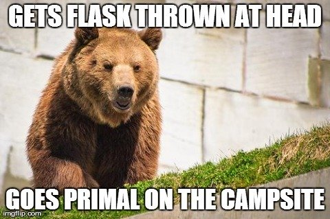 Don't Throw Your Flask at a Bear!