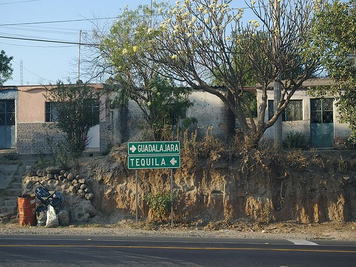 Tequila Road Sign in Mexico